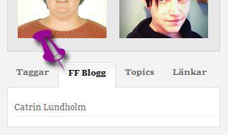 FFBloggare