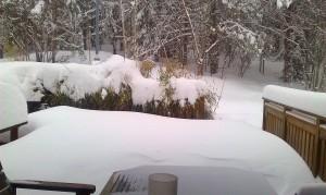 Vinter i VH