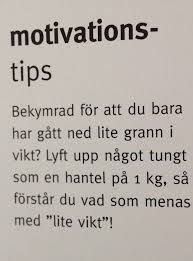 lite_vikt